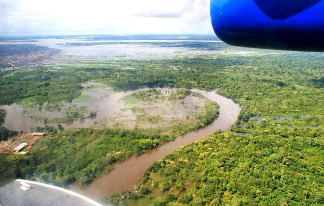 Bosques Inundados de la Amazonia