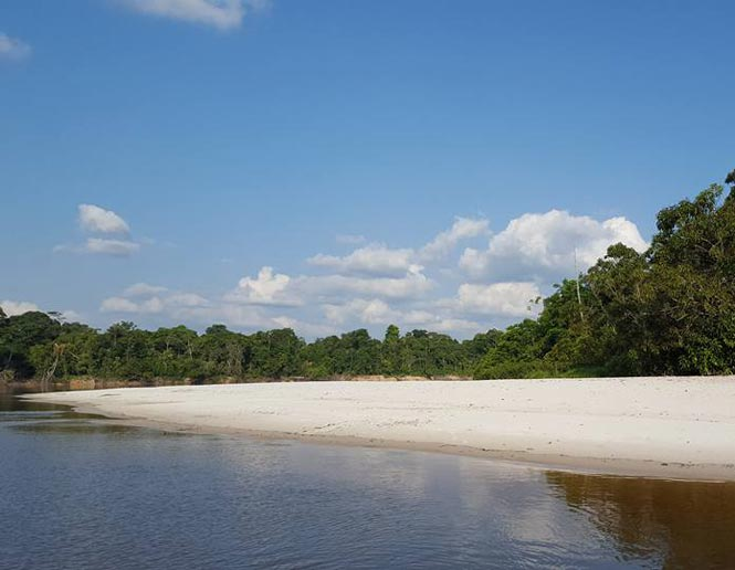 playas ribereñas de arena