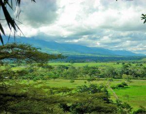 pasturas y tierras agricolas