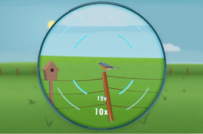 factor de aumento y Luminosidad de Imagen Binoculares