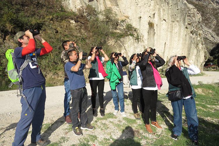 grupo en salida de observación de aves